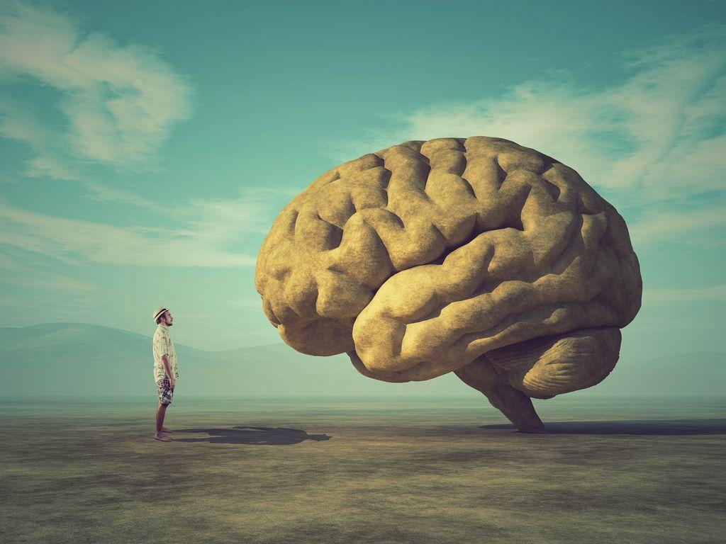 7 מזונות יעילים לשיפור הריכוז והזיכרון