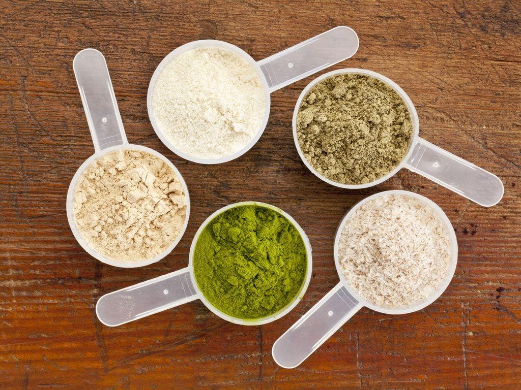 אילו אבקות חלבון קיימות?