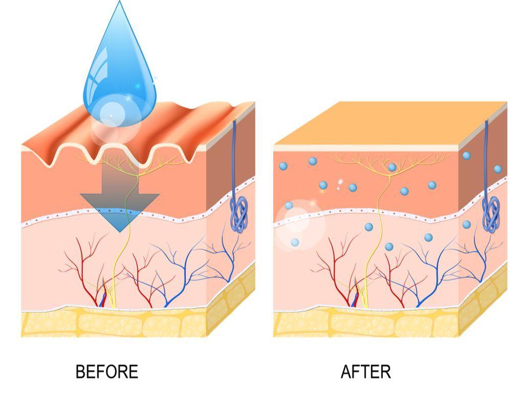 כל מה שרצית לדעת על אבקת קולגן
