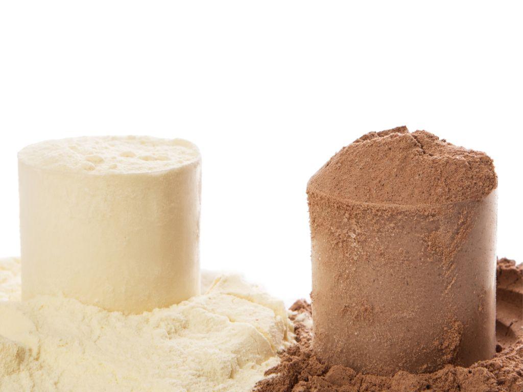 מה ההבדל בין אבקת חלבון לגיינר?