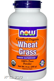 עשב חיטה אורגני NOW Wheat Grass