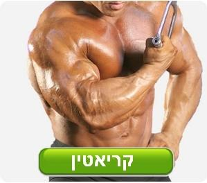 whey protein אבקת חלבון
